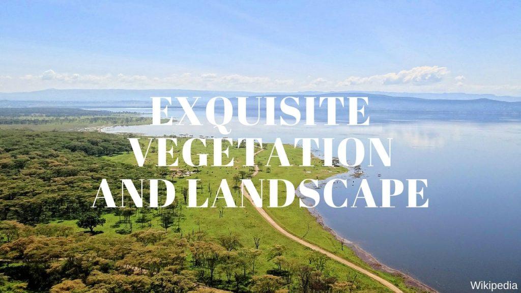 Lake Nakuru National Park Landscape