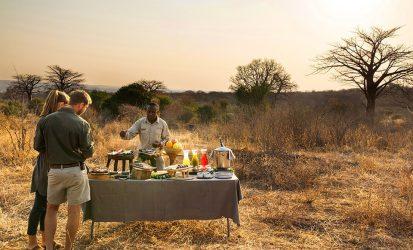 Bush Breakfast in Masai Mara