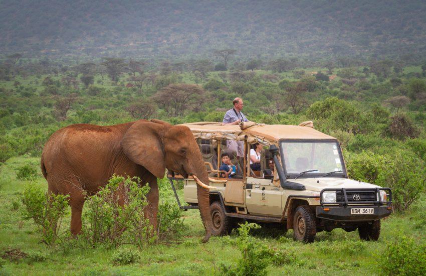 Elephant Bedroom Camp - Samburu Game Drive