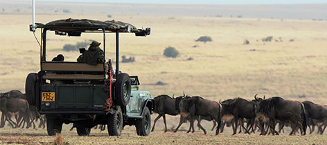 8 Days 7 nights Serena Flying Safari