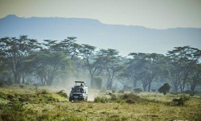 Game Dive at Lake Nakuru National Park