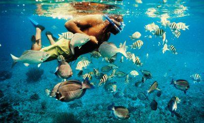 Africa Beach Snorkeling