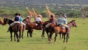 Horseback riding in the Mara