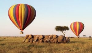 Hot air balloon safari in Masai Mara
