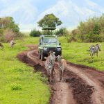 Kenya safari tours from UK