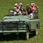 Kenya Safari Guide from USA