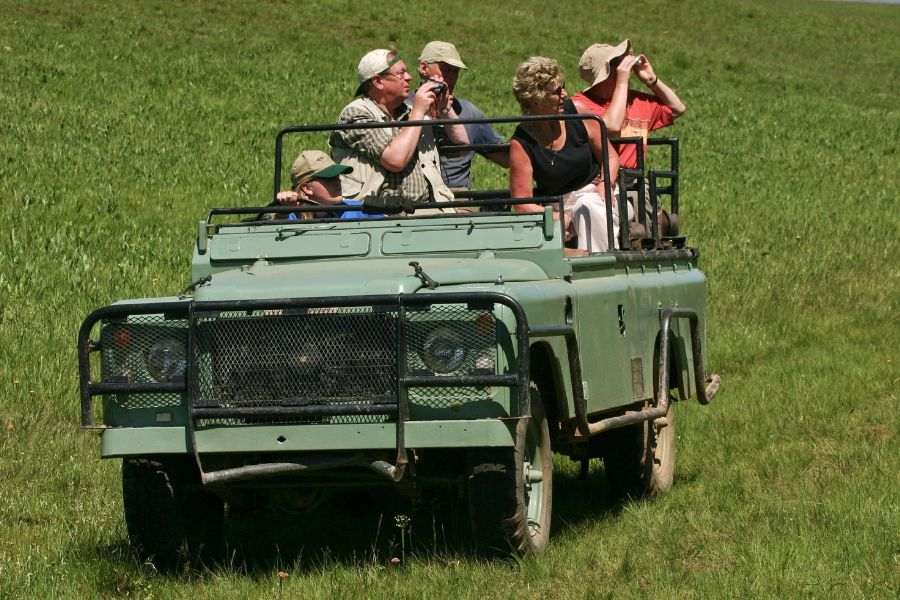 Kenya Safari Guide from USA