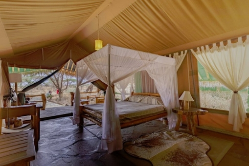 Kibo Safari Camp