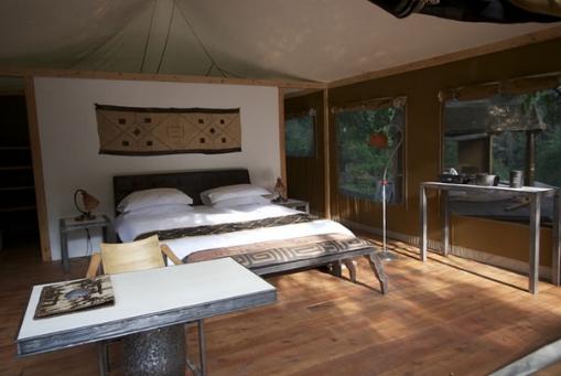 Rhino River Room
