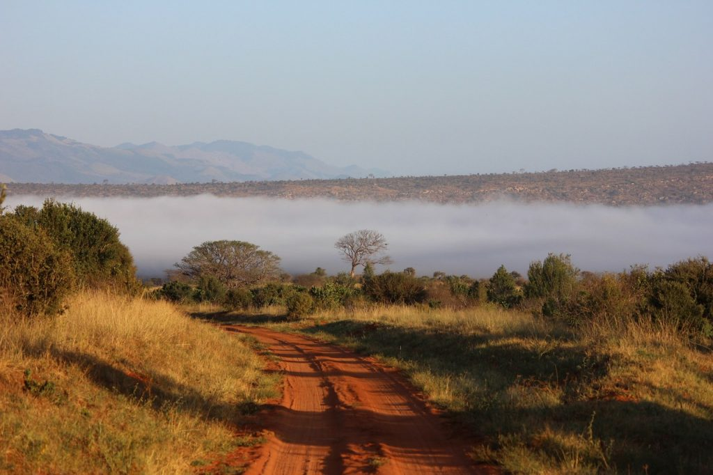 The Tsavo Lanscape in Kenya