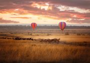5 Reasons Why Masai Mara is a World Class Honeymoon Destination